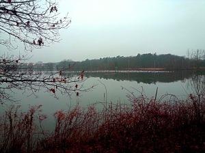 Lake Q Twilight . Original Image