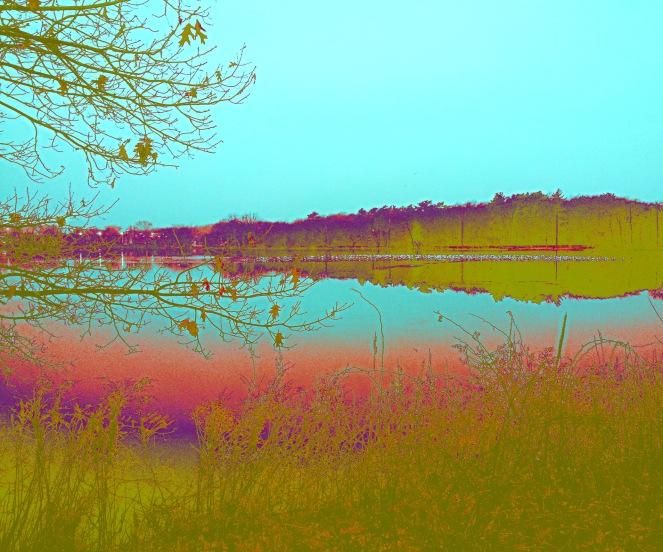 Lake Q Twilight.Week 3.
