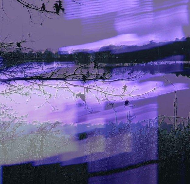 Lake Q Twilight, Week Two