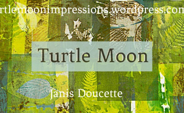 Turtle Moon Etsy Shop Opens!