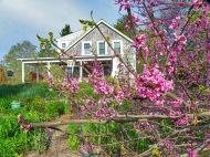 Earthsong Farm