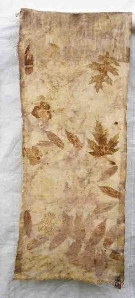Maple.Oak and Sumac.