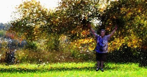 I am an autumn tree.