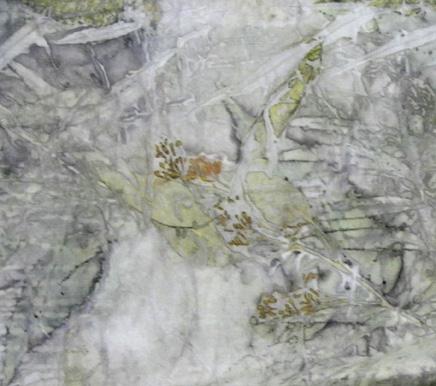 seeded-eucalyptus-web