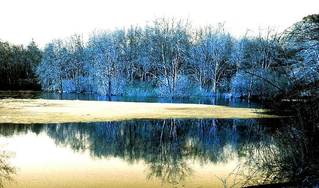 Winter Receeds