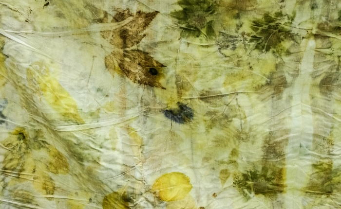 Intro to Eco Printing Workshops  Begin. Morescheduled.