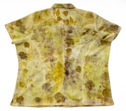 Woman's Shirt Back