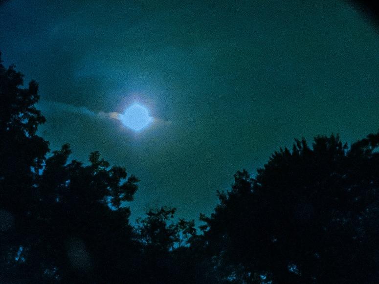 South Facing Moon 1 (1 of 1)