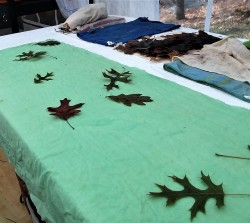 Layer 1: leaves soaked in calcium carbonate.